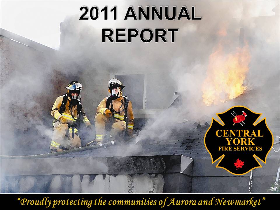 2011 report image