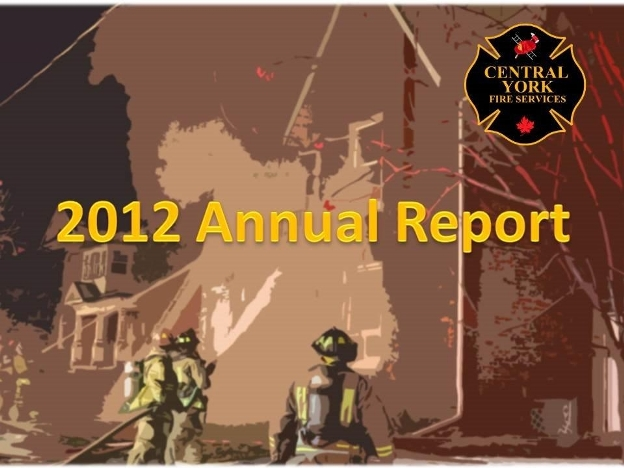 2012 report image